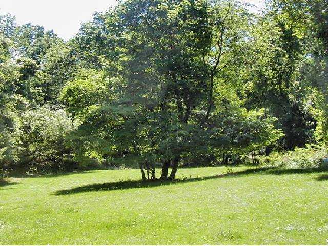 Real Estate for Sale, ListingId: 21707552, Stony Pt,NY10980