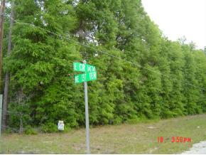 Real Estate for Sale, ListingId: 23095029, Gainesville,FL32641