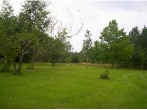 primary photo for 0 NW 94TH Avenue, Alachua, FL 32615, US