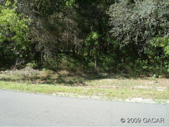 Real Estate for Sale, ListingId: 20902742, Fanning Springs,FL32693