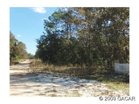 Real Estate for Sale, ListingId: 19002192, Keystone Heights,FL32656