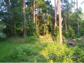 Land for Sale, ListingId:23095028, location: 0 NE 137 Place Gainesville 32605