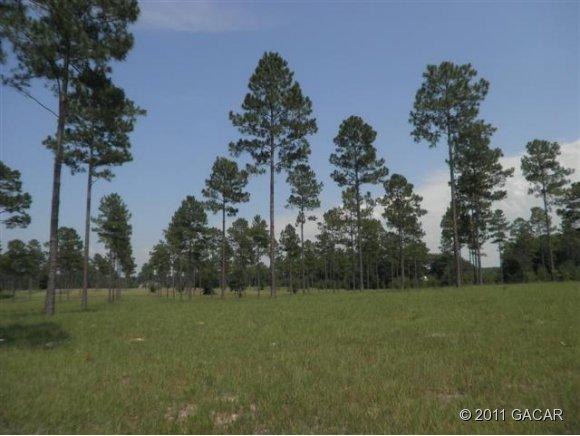 Real Estate for Sale, ListingId: 27414422, High Springs,FL32643