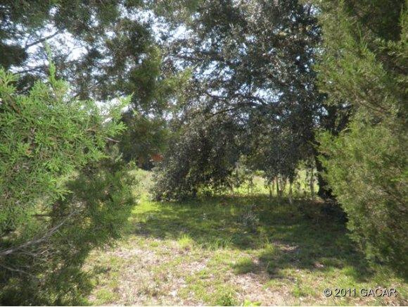 Real Estate for Sale, ListingId: 27414425, High Springs,FL32643