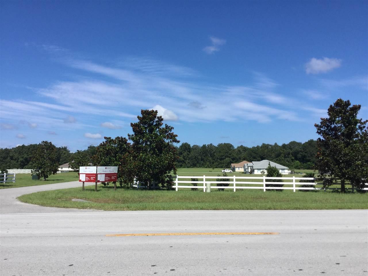 Real Estate for Sale, ListingId: 19000741, High Springs,FL32643