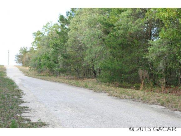 Real Estate for Sale, ListingId: 23070947, Williston,FL32696