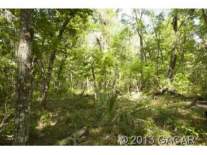 8329 County Road 234, Gainesville, FL 32641