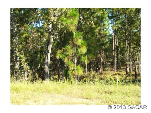 Real Estate for Sale, ListingId: 25252051, Hawthorne,FL32640