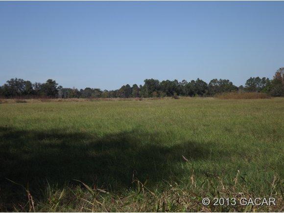 Real Estate for Sale, ListingId: 26034680, Alachua,FL32615