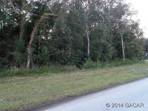 Real Estate for Sale, ListingId: 26135915, Fanning Springs,FL32693