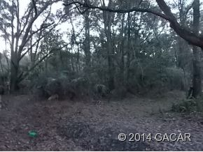 Land for Sale, ListingId:26403341, location: 400 SE block of 17th Terrace Gainesville 32601