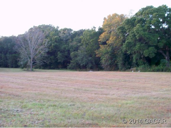 Land for Sale, ListingId:27007983, location: 1122 SW 266th Street Newberry 32669