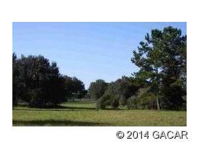 Real Estate for Sale, ListingId: 28936561, Williston,FL32696