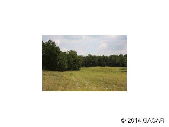 Real Estate for Sale, ListingId: 29165921, Ft White,FL32038