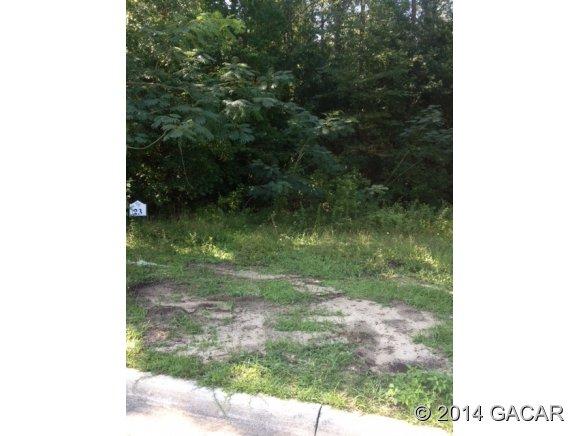 Real Estate for Sale, ListingId: 29211967, Alachua,FL32615