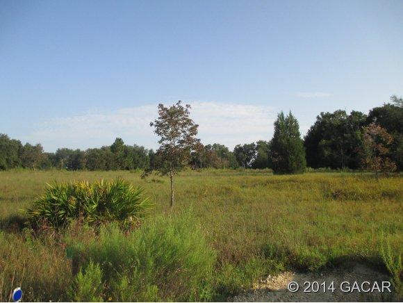 Real Estate for Sale, ListingId: 29604069, Trenton,FL32693