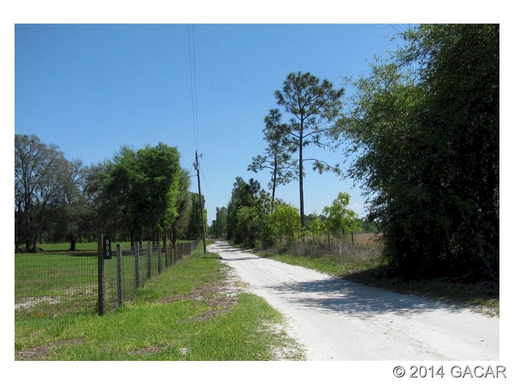 Real Estate for Sale, ListingId: 29840384, Bell,FL32619