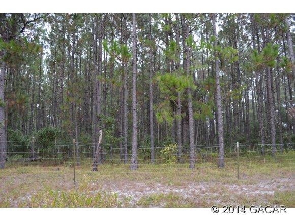 Real Estate for Sale, ListingId: 30495658, Gainesville,FL32641
