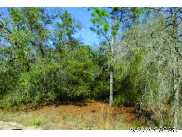 7157 Coe Dr, Keystone Heights, FL 32656