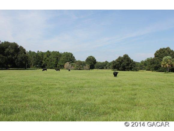 Real Estate for Sale, ListingId: 31010818, Cedar Key,FL32625