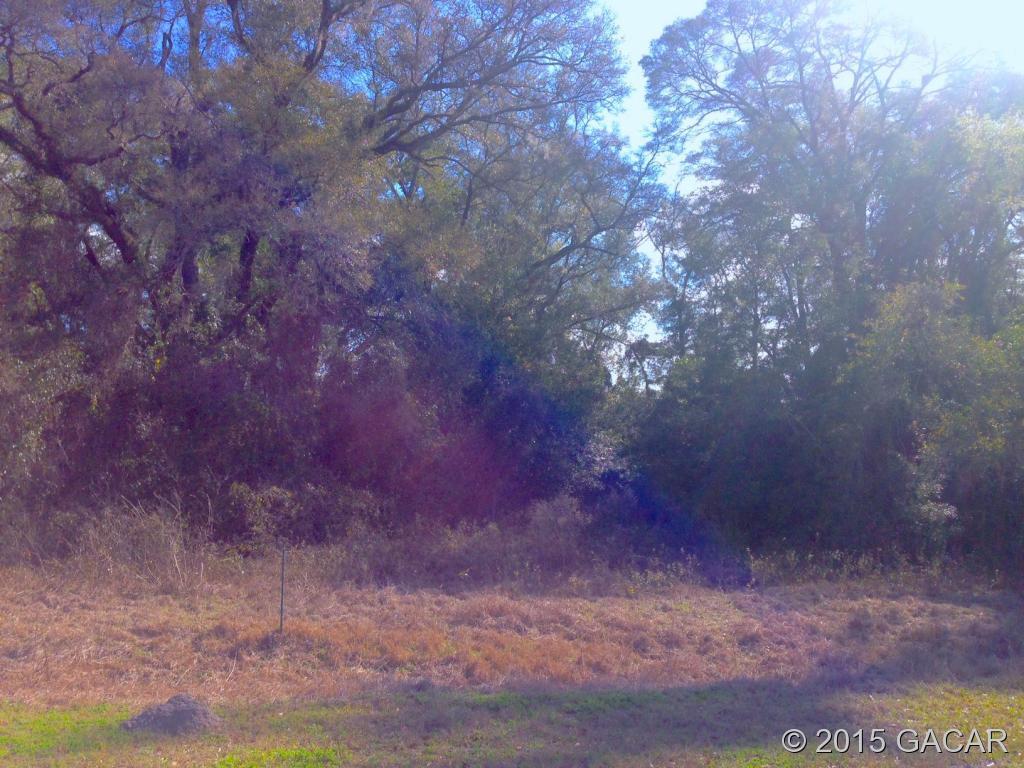 Real Estate for Sale, ListingId: 31954809, High Springs,FL32643