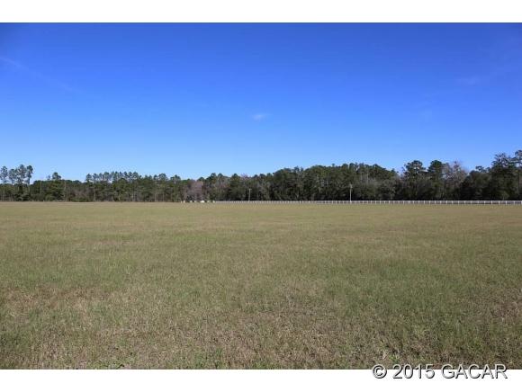 Real Estate for Sale, ListingId: 32270646, Alachua,FL32615