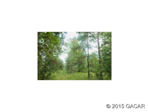Real Estate for Sale, ListingId: 34734181, Jonesville,FL32669