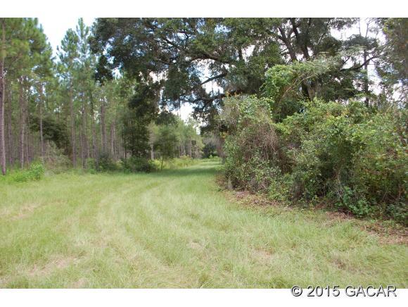 Real Estate for Sale, ListingId: 35446505, Melrose,FL32666