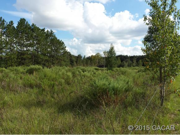 Land for Sale, ListingId:35717453, location: 28805 County Road SW 30th Avenue Newberry 32669