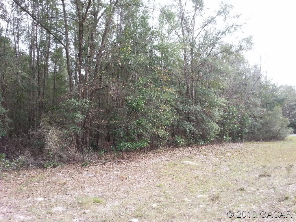 Real Estate for Sale, ListingId: 36866042, High Springs,FL32643