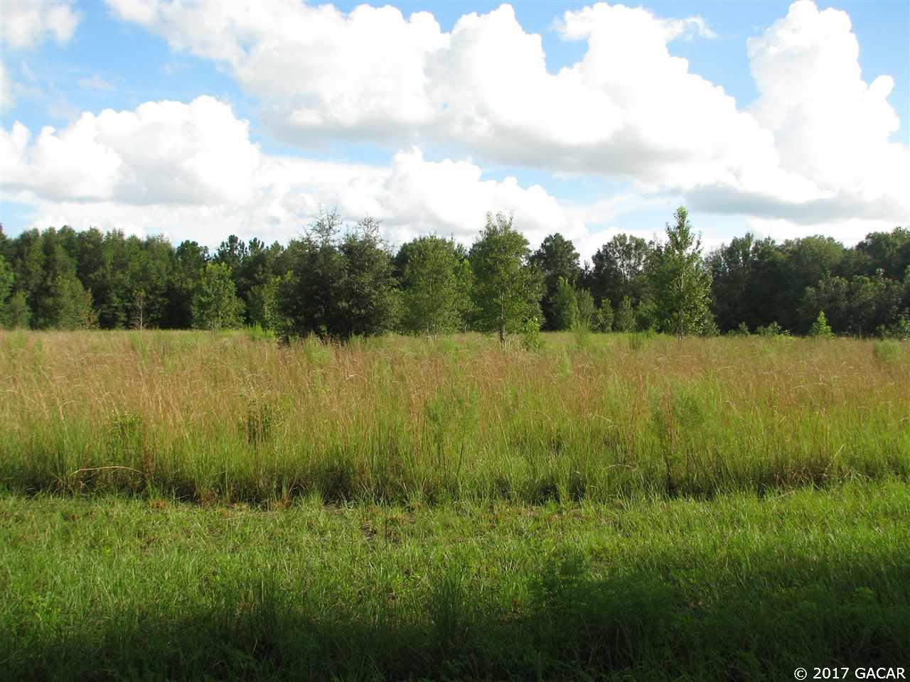 primary photo for 0000 NW 126 th Lane, High Springs, FL 32643, US