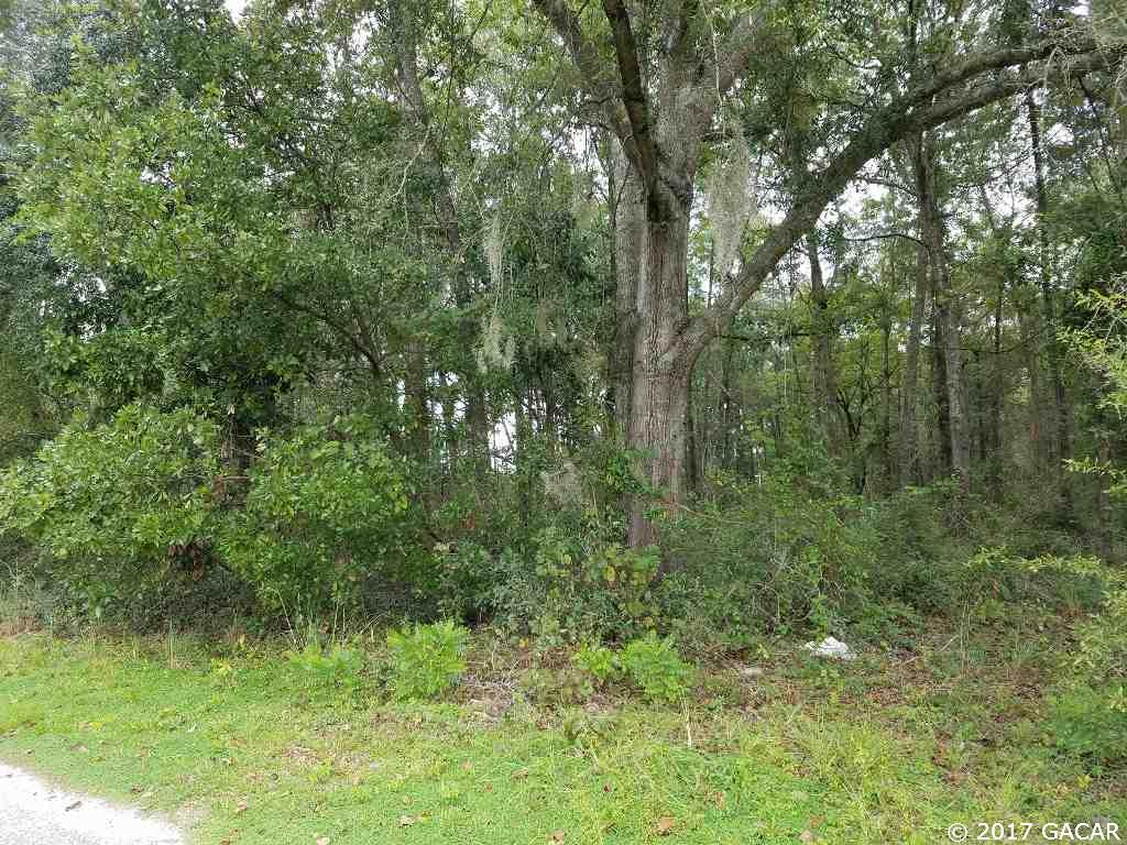 XX SW State Road 47 Fort White, FL 32038