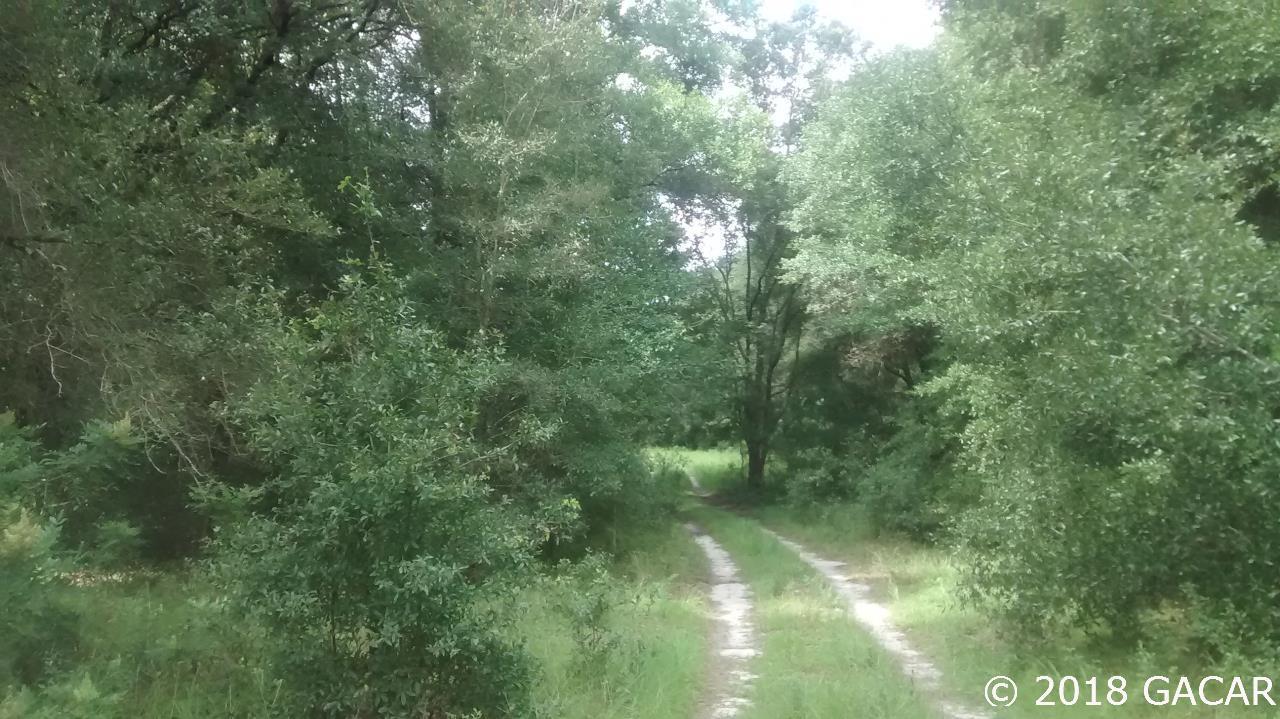 15422 Redbird Road - photo 9