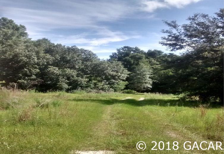 15422 Redbird Road - photo 2
