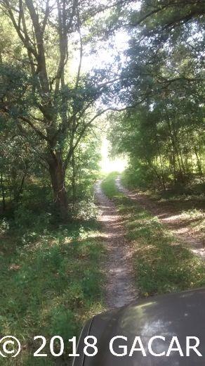 15422 Redbird Road - photo 3