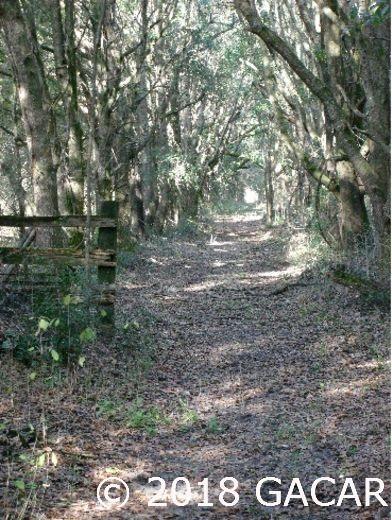 15422 Redbird Road - photo 5