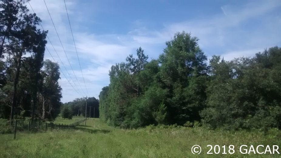 15422 Redbird Road - photo 8