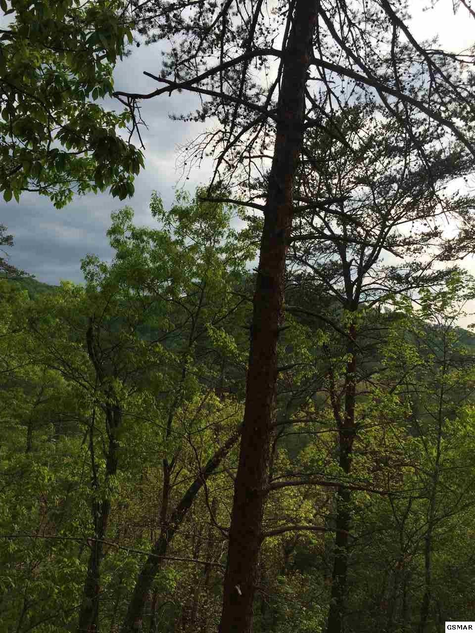 Lot 73 Parkside Retreat Way, Sevierville, Tennessee