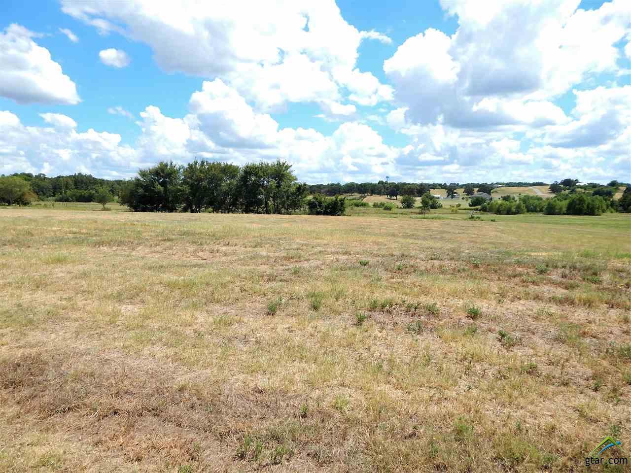 TBD Grand View Drive Athens, TX 75752
