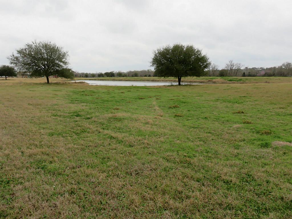 Photo of 7597 County Road 333  Plantersville  TX