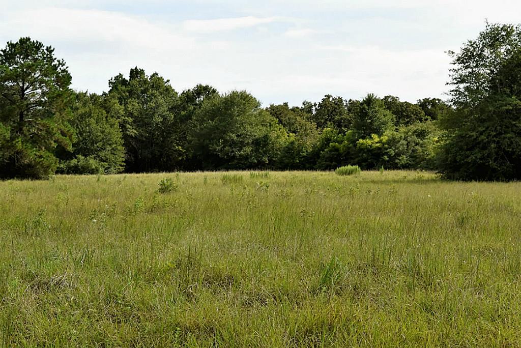Photo of 761 Meadow Bend Road  Bellville  TX