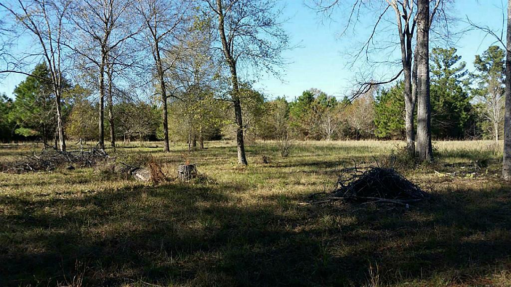 Photo of 12923 Kowis Lane  Plantersville  TX