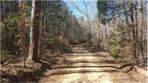Photo of 31ac County Road 422  Nacogdoches  TX