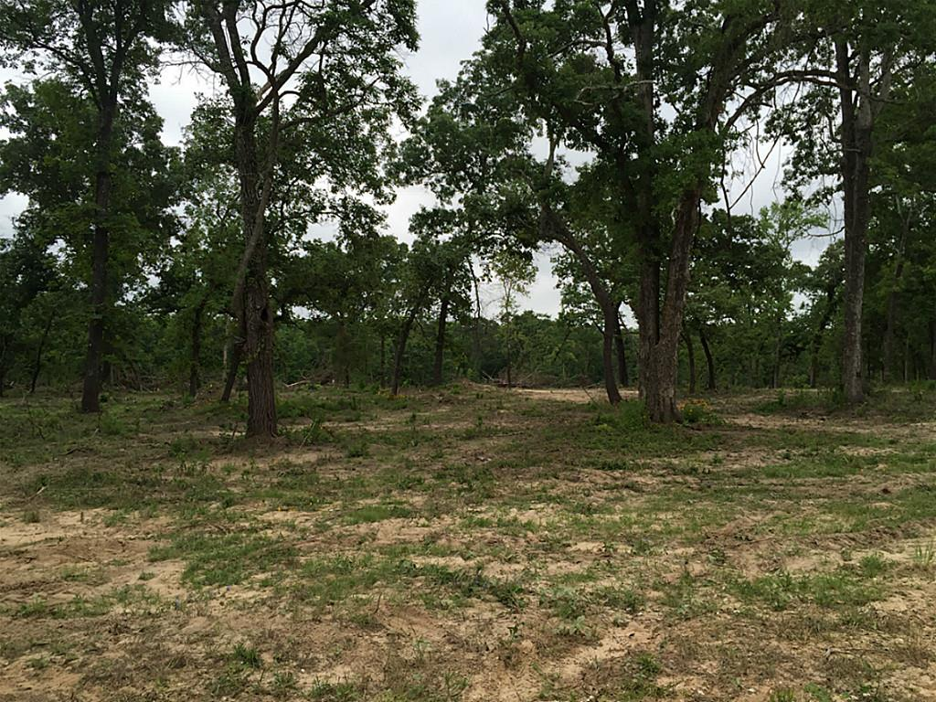 Photo of 20284 County Road 224  Oakwood  TX