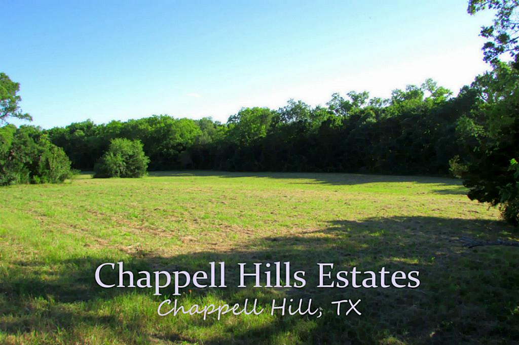 Photo of 55 And 56 Katie  Chappell Hill  TX
