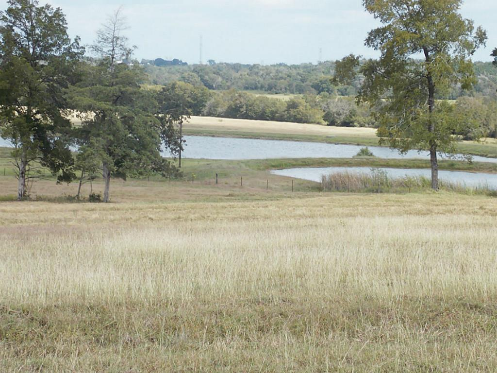 Photo of 0 County Rd 220  Anderson  TX