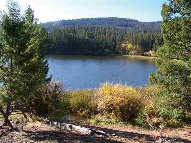 Real Estate for Sale, ListingId: 28227362, Helmville, MT  59843