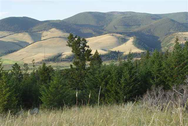 1,662 acres Helmville, MT