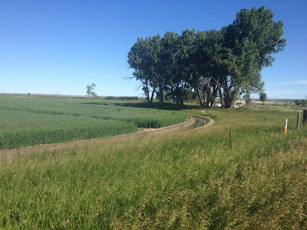 1524 acres in Chinook, Montana
