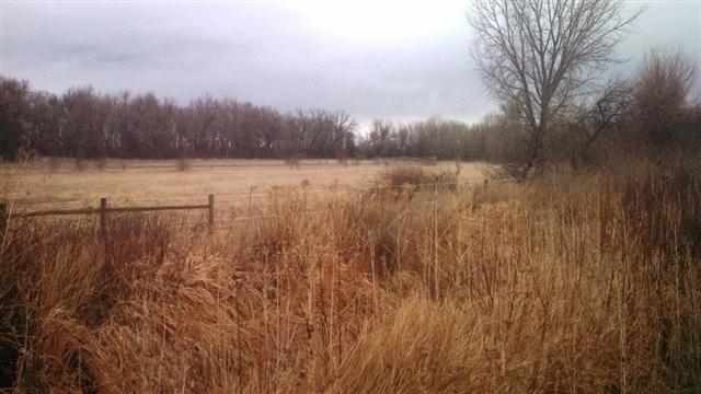 1323 Thiel Rd, Laurel, MT 59044